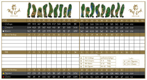 Wolf Creek Golf Club Mesquite Scorecard - Mesquite, Nevada - MesquiteGolfCourses.com