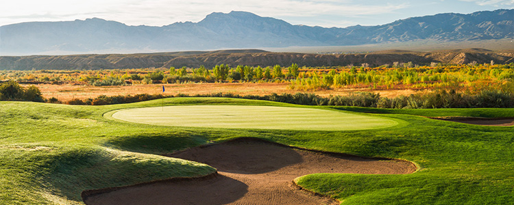 #15 The Palms Golf Club - Mesquite, Nevada - Photo by Brian Oar - All Rights Reserved